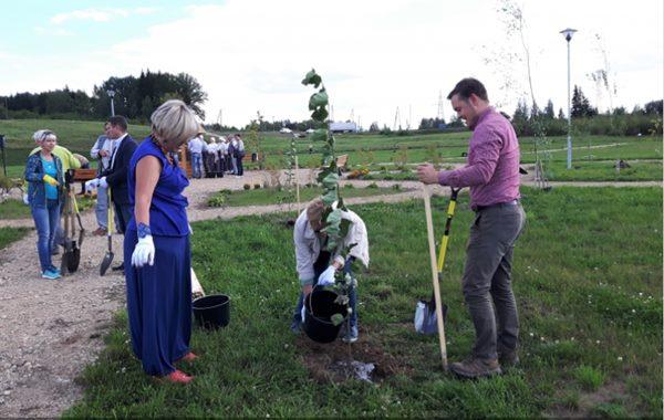 Ludzas Gaismas dārzā tika iestādīti 75 kociņi un ap 200 peonijām