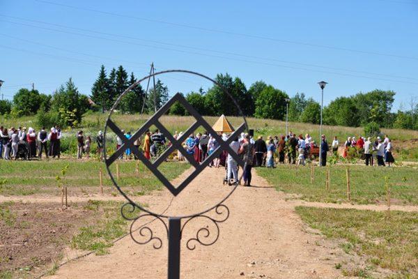 Aicina ziedot peoniju stādus Gaismas dārzam Ludzā