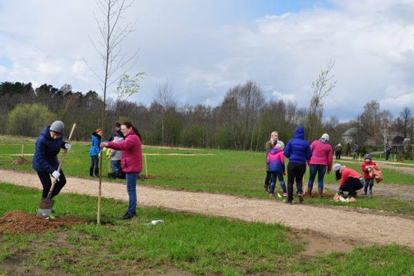 Meža dienu ietvaros Ludzā notiks seminārs par dārzu un parku ierīkošanu