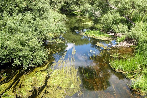 Attīrīs Ludzas upes posmu 6 km garumā