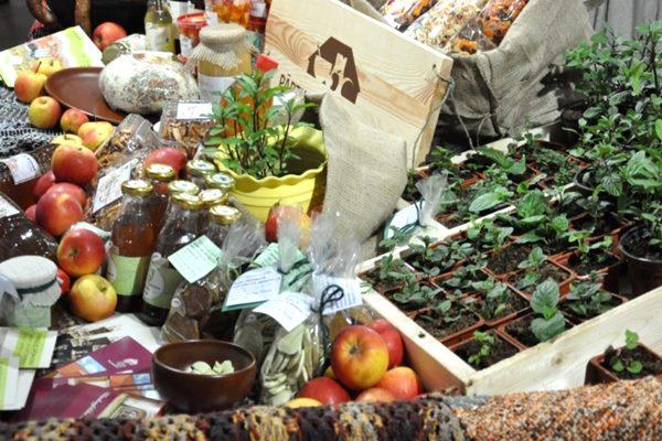 Šī gada laikā Ludzas novada mājražotāji guva jaunas zināšanas un pieredzi