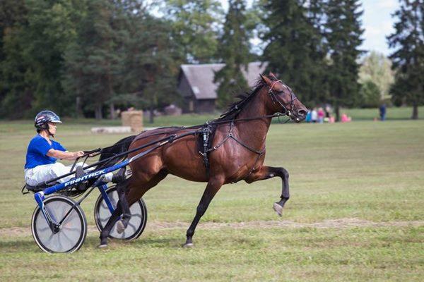 Sandra Soikāne iegūst 1. vietu zirgu rikšotāju sacensībās Gulbenē