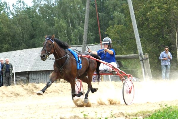 Ciblas novada rikšotāju zirgu braucējas gūst uzvaru Krāslavā